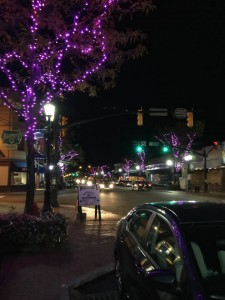purple lights - Willoughby